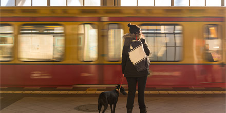 Tous les chiens autorisés dans le métro !