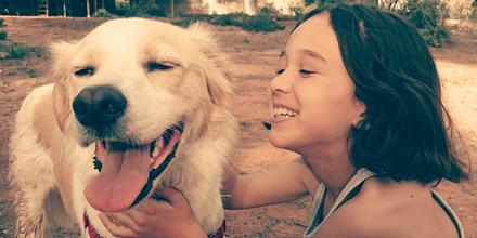 Comparez les offres d'assurance animale et payez moins cher les frais vétérinaires