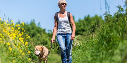 Santé : votre chien, votre allié pour être en meilleure santé