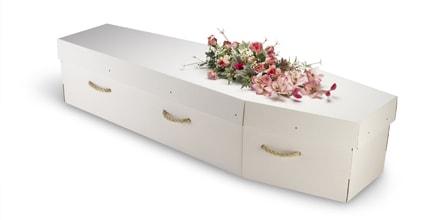 Le cercueil en carton, le geste écologique ultime avant de mourir
